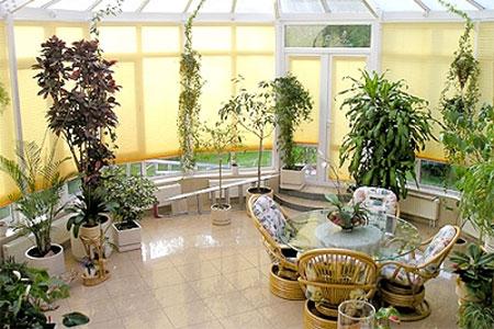 Зимний сад в доме дизайн