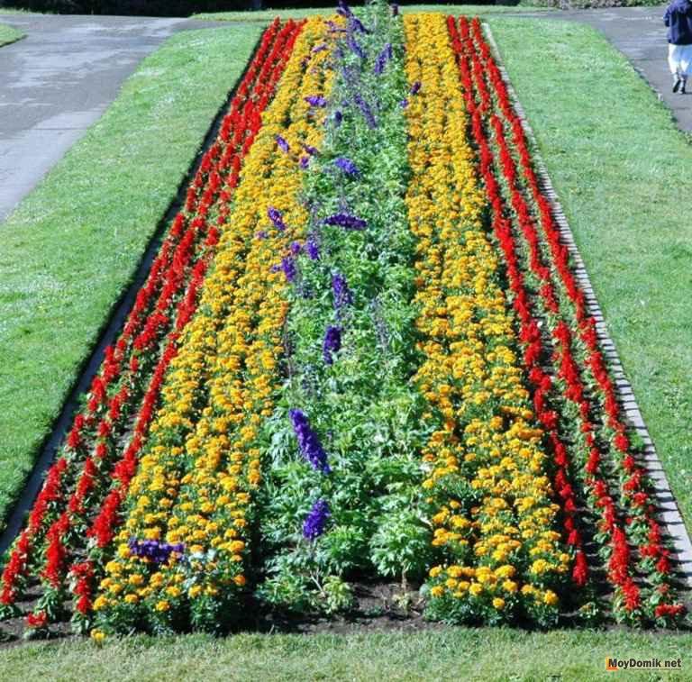 Оформление рабатки своими руками – растения и цветы для рабаток