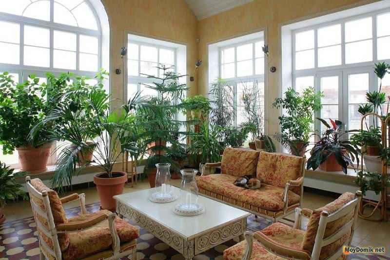 Дизайн интерьера зимнего сада