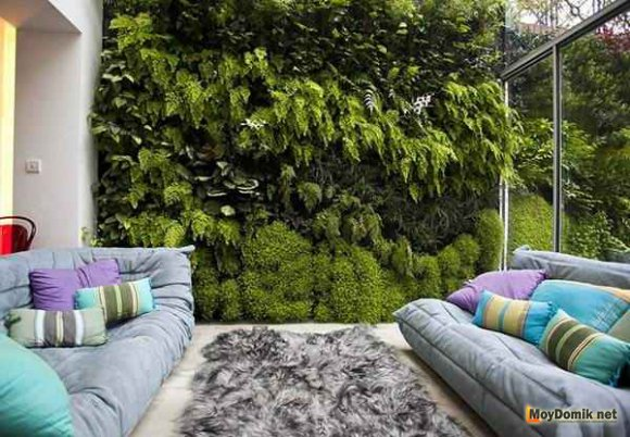 Дизайн зимнего сада в доме и квартире