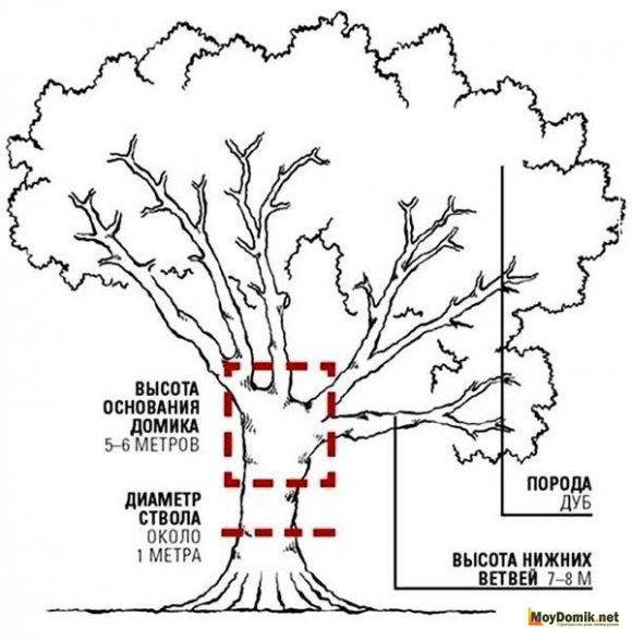 Схема расположения домика на