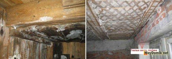Гниение и повреждение плесенью деревянных балок перекрытия
