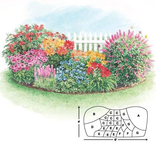 Схема цветника-клумбы для ландшафтного дизайна