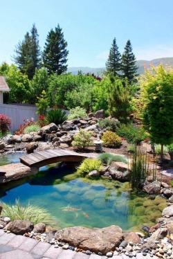 Искусственный пруд в ландшафтном дизайне загородного дома