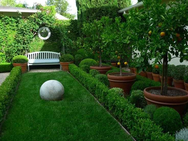 Дизайн сада своими руками на 6 сотках