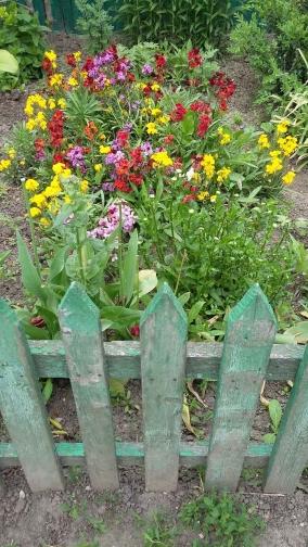 Дизайн сельского сада