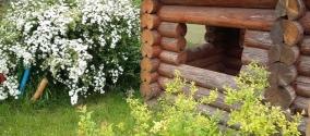 Дизайн сада в сельском стиле