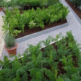 Дизайн сада с прямоугольными грядками