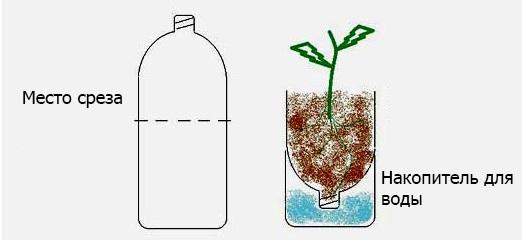 Как сделать вертикальную грядку из пластиковых бутылок своими руками