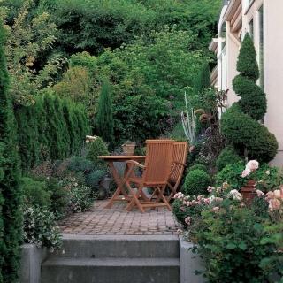 Живая изгородь в ландшафтном дизайне загородного дома