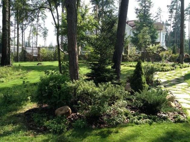 Ландшафтный дизайн дачного участка в загородном (лесном) стиле