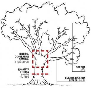 Схема расположения домика на дереве