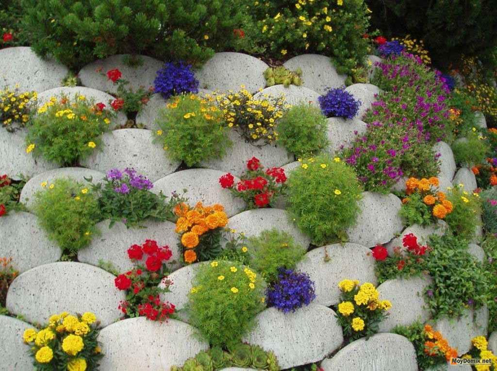 Цветы у дома и клумба с камнями маленькими