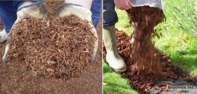 Засыпка мульчи - как сделать дорожку из коры дерева