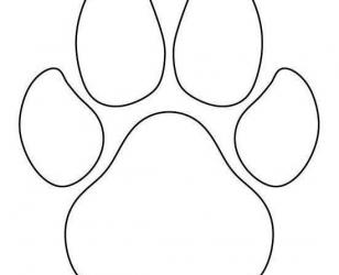 Шаблон - лапа собаки