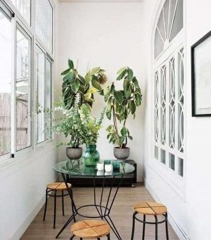 Декоративное озеленение балкона