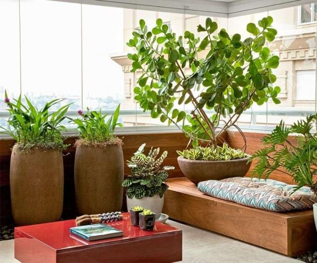 Дизайн балкона с озелинением